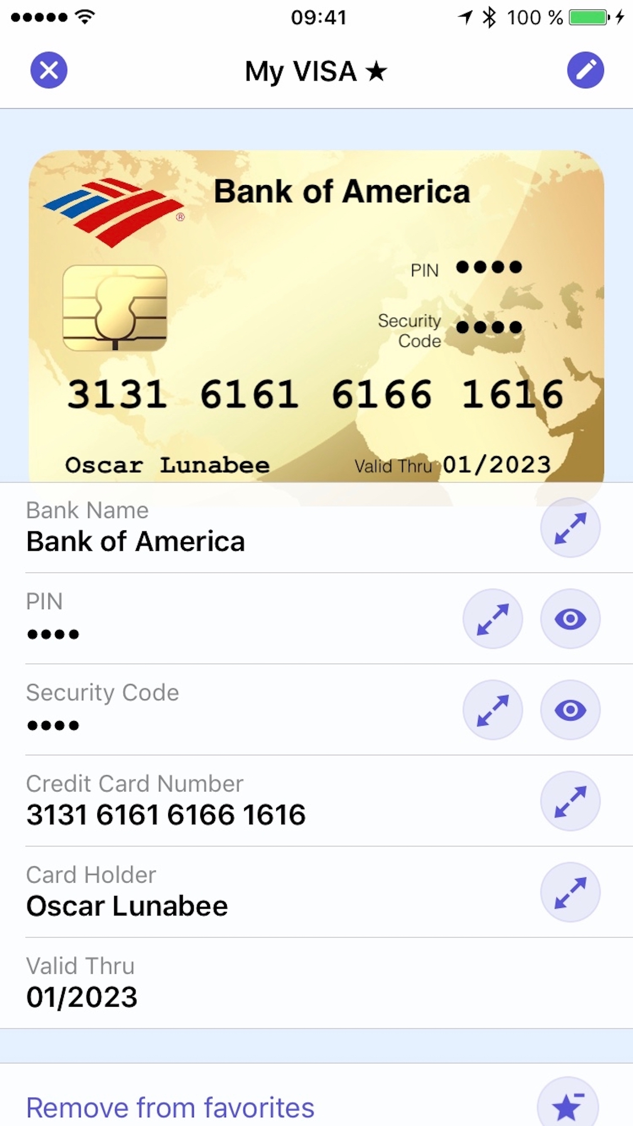 screenshot of oneSafe card details